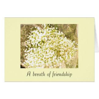 102_0231breath da amizade cartao