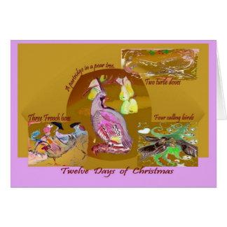 12 dias do cartão do Natal