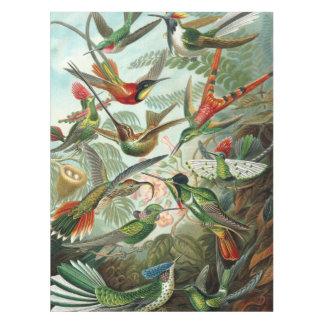 12 pássaros americanos do zumbido produzem pintado toalha de mesa