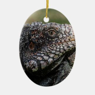 1920px-Iguanidae_head_from_Venezuela Ornamento De Cerâmica Oval