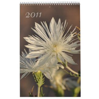 2011 calendários florais