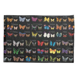 30 espécies da borboleta de todo o mundo