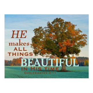 3:11 de Ecclesiastes todo o cartão bonito das