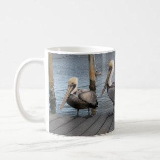 3 pelicanos em seguido caneca de café