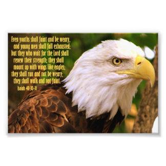 40:30 de Isaiah - 31 com águia americana Impressão De Foto