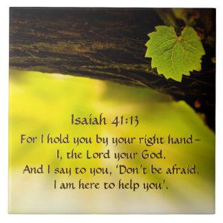 41:13 de Isaiah eu guardaro-o por sua bíblia do