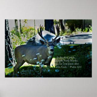 42:1 e cervos do salmo poster