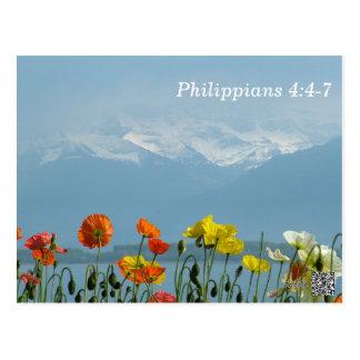 4:4 dos Philippians - cartão de memória de 7