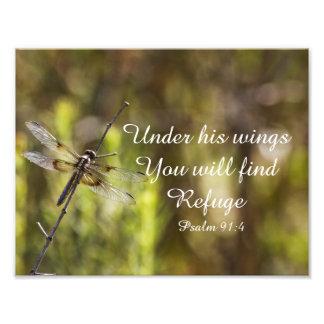 91:4 do salmo com libélula impressão de foto