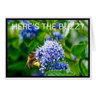 A abelha do mel aqui é o cartão do zumbido