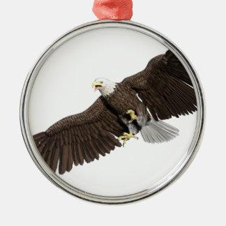 A águia americana com as asas em para baixo afaga ornamento de metal