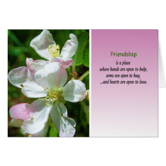 A amizade é um lugar… cartão comemorativo