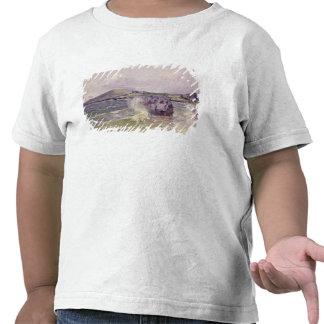 A Angra da senhora, Wales, 1897 Camiseta