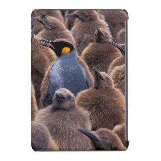 A Antártica, ilha sul de Geórgia, pinguins de rei Capa Para iPad Mini Retina