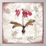 A arte botânica do vintage imprime a beladona do poster