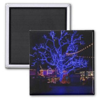 A árvore azul imã