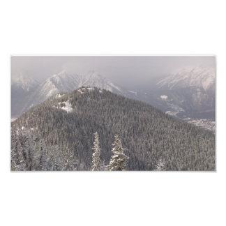 A árvore cobriu a parte superior da montanha impressão de foto
