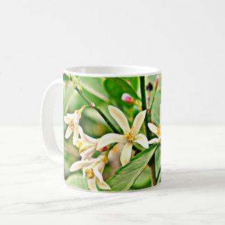 A árvore de Apple floresce copo de café clássico Caneca De Café