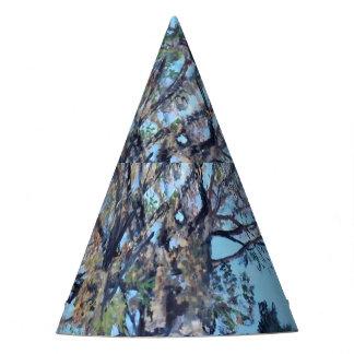 A árvore de Kachere, chapéu do partido