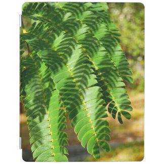 A árvore de seda persa sae da capa de ipad