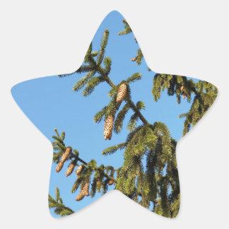 A árvore para o Natal Adesito Estrela
