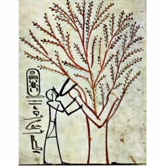 A árvore santamente do rei Ser Fed (senhora Sy Foto Escultura