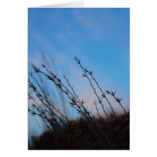 A beleza de cartões de nota da simplicidade