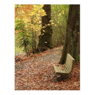 A beleza do outono cartão postal
