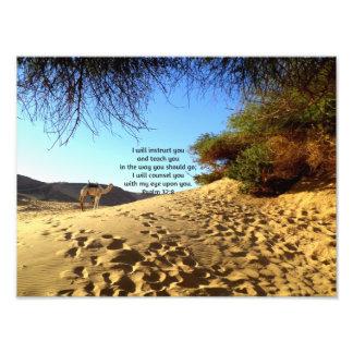 A bíblia Verses o 32:8 inspirado do salmo das cita Impressão De Foto