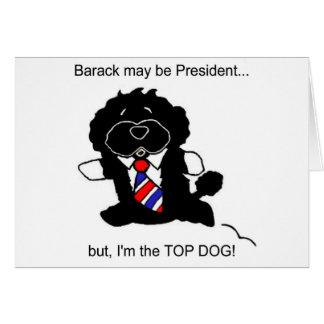 A BO é o cartão do cão superior (h)