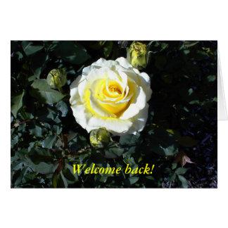 A boa vinda para trás carda com rosas amarelos cartão comemorativo