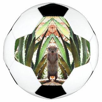 """""""A bola do rei"""" futebol"""