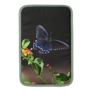 A borboleta explora, sonha, e descobre o cobrir do bolsa de MacBook