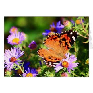 A borboleta no áster floresce o cartão de