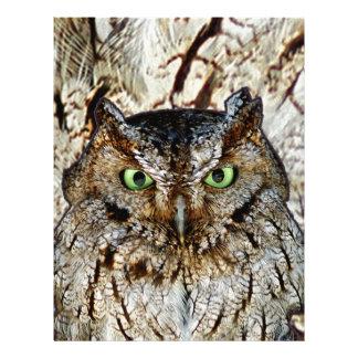 A buzina da coruja Eyes o pássaro animal Modelo De Papel De Carta