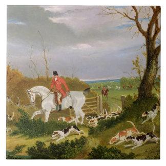 A caça do Suffolk - indo cobrir perto de