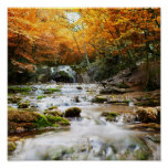 A cachoeira bonita na floresta, outono pôsteres