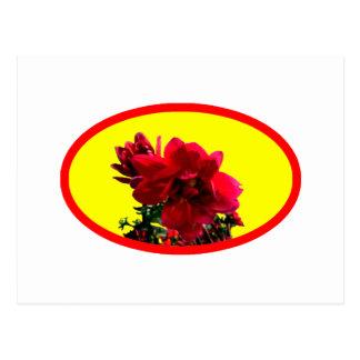 A camélia BG amarela os presentes de Zazzle do Cartoes Postais