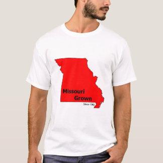 A camisa de Brendan