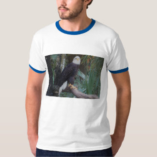 A camisa dos homens da águia americana