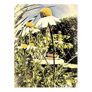 A camomila floresce (o cartão do estilo antigo)