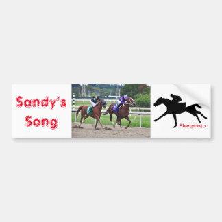 A canção de Sandy - Silvestre Gonzalez Adesivo Para Carro