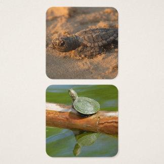 A casa do escritório da tartaruga personaliza cartão de visitas quadrado