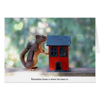 A casa é o lugar onde o coração é esquilo cartão comemorativo