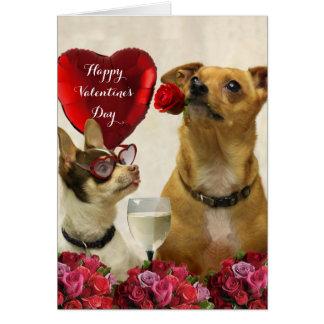 A chihuahua do feliz dia dos namorados persegue o cartão