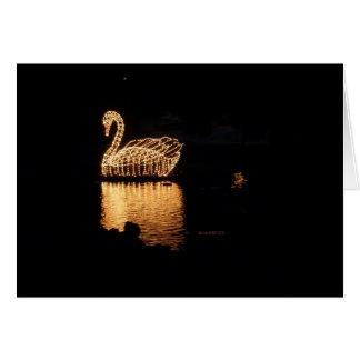 A cisne ilumina o cartão