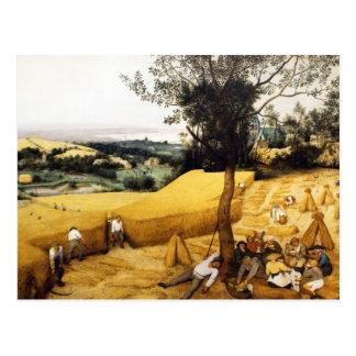 A colheita de milho - 1565 cartão postal