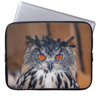 A coruja esteja vendo-o capa de computador notebook