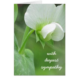 A ervilha floresce cartão do modelo da simpatia