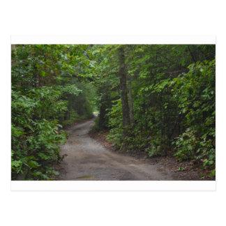 A estrada de terra no verão cartão postal